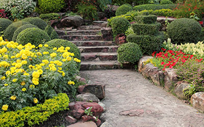 Try These 8 Landscape Design Principles In Your Garden Green Solutions